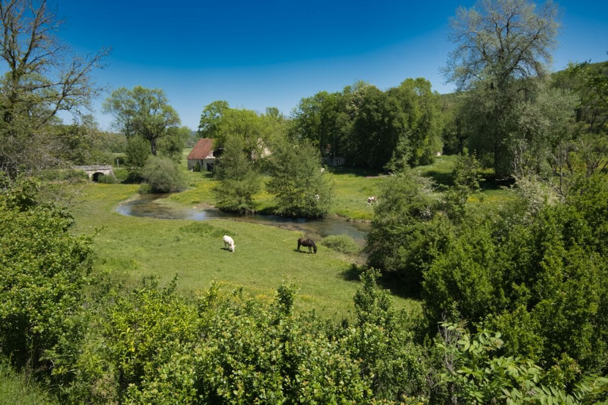 Une très belle étape champêtre et bucolique le long des jolies rivières que sont la Suize et l'Aube.