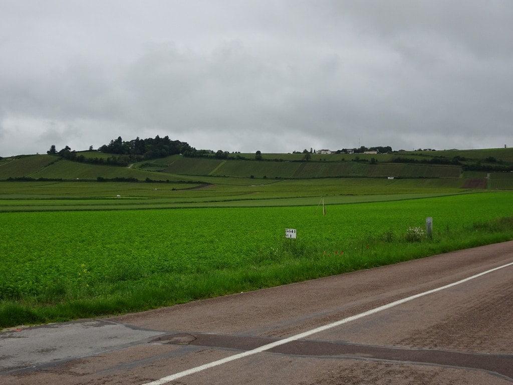 La montée à Montgueux au milieu des vignes